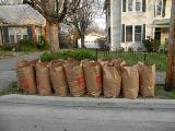 Two Weeks of Unlimited Landscape Waste Collection Begins Monday, April 5th
