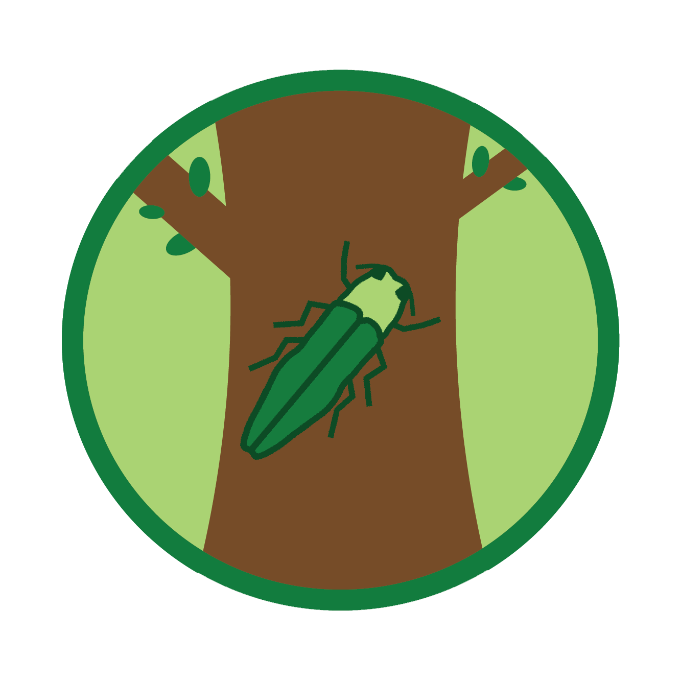 Emerald Ash Borer Treatment Status
